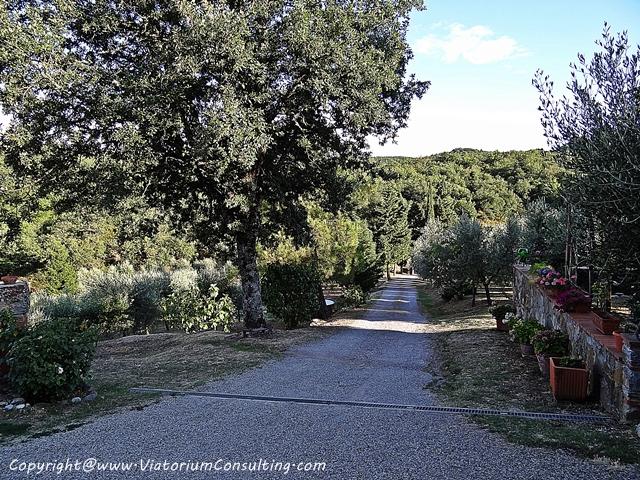 chianti_toscana_italia_ViatoriumConsulting (1)