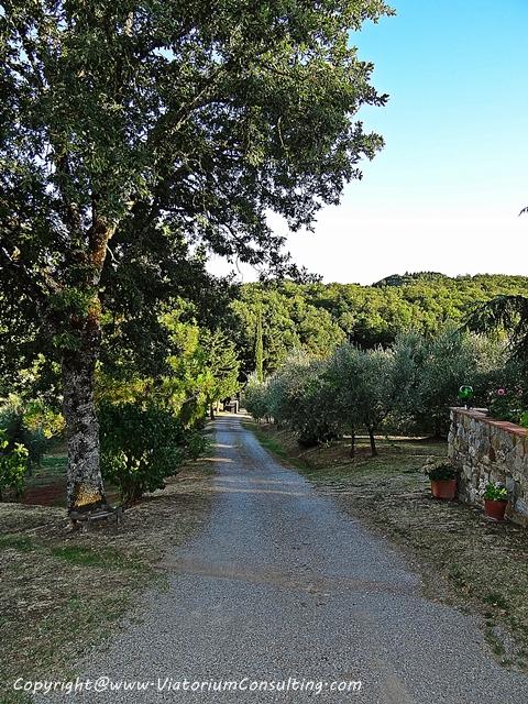 chianti_toscana_italia_ViatoriumConsulting (17)